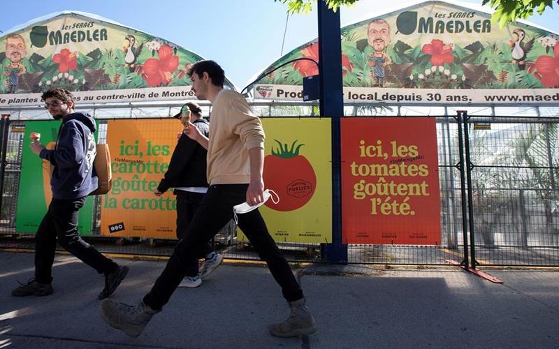 """Người dân địa phương mô tả Montreal là thành phố """"đa dạng"""" và nổi tiếng với tinh thần cộng đồng, đặc biệt là trong đại dịch Covid-19. Ảnh: Reuters"""