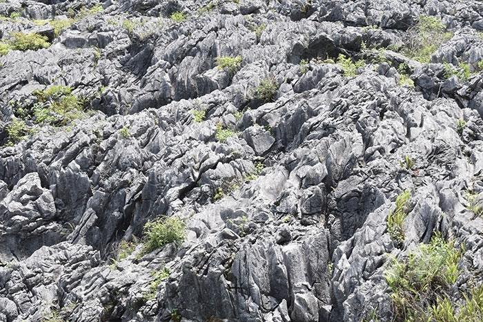 Ngày 03/10/2010, Cao nguyên đá Đồng Văn của Hà Giang được UNESCO chính thức công nhận là Công viên địa chất toàn cầu. Hãng truyền thông quốc tế CNN cũng bình chọn Cao nguyên đá Đồng Văn - Công viên địa chất toàn cầu là một trong 10 điểm đến tuyệt vời nên khám phá ở Việt Nam. Cao nguyên đá Đồng Văn nằm ở độ cao trung bình 1.000 – 1.600m so với mực nước biển, trên diện tích gần 2.356km² trải dài qua địa bàn 4 huyện Quản Bạ, Yên Minh, Mèo Vạc và Đồng Văn của tỉnh Hà Giang