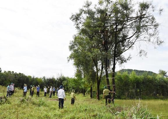 Phó Chủ tịch UBND tỉnh Hà Tĩnh Đặng Ngọc Sơn và đoàn kiểm tra giám sát việc tháo dỡ một số lùm đánh chim quy mô ở xã Thịnh Lộc