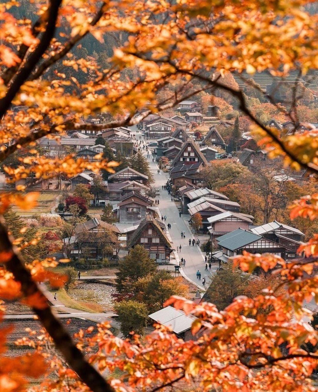 Làng cổ Shirakawago vào Thu 6