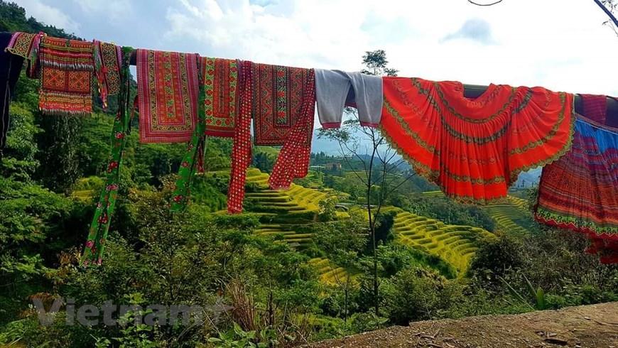 Tại Việt Nam, hệ thống ruộng bậc thang là phương thức sản xuất của rất nhiều dân tộc sinh sống như La Chí, Hà Nhì, Mông, Dao, Nùng... (Ảnh: Đỗ Hùng/Vietnam+)