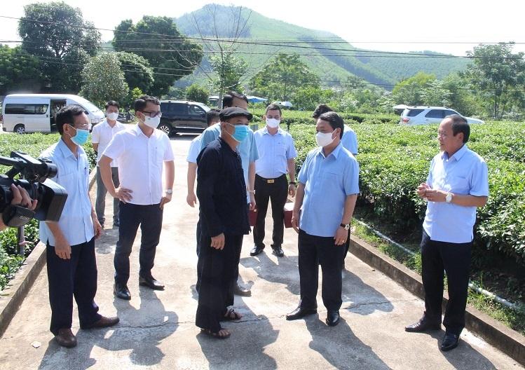 Bộ trưởng, Chủ nhiệm Hầu A Lềnh tham quan mô hình sản xuất chè an toàn của ông Lê Quang Nghìn