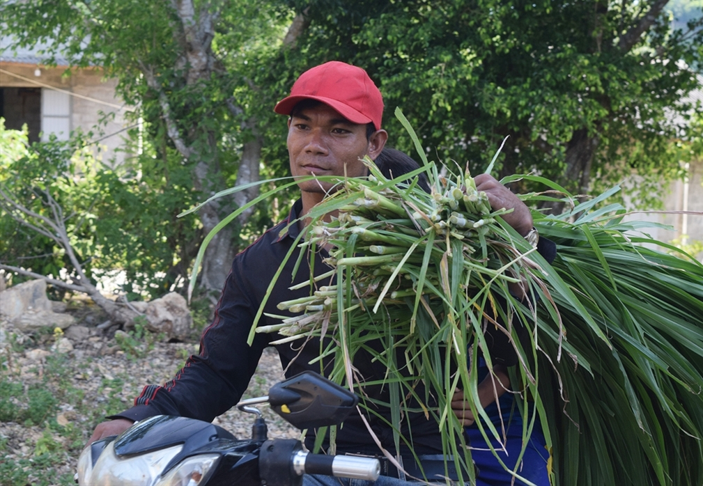 Nhờ siêng năng và khát khao vươn lên làm giàu, Hồ Minh đã tự xây dựng cho mình một mô hình kinh tế hộ gia đình ngày càng hoàn chỉnh, cho thu nhập cao