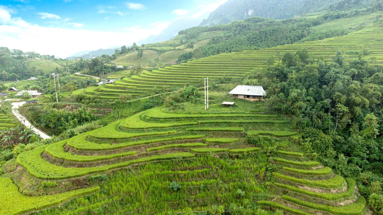 Ở thôn Khuổi Trang và Khuổi Củng đều có những thửa truộng bậc thang, qua đầu tháng 10 lúa bắt đầu chín rộ