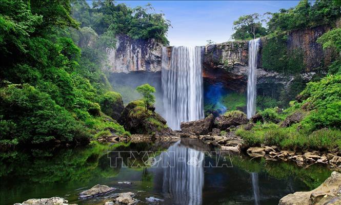 Khu dự trữ sinh quyển Núi Chúa và Kon Hà Nừng vừa được UNESCO vinh danh Khu dự trữ sinh quyển thế giới. Ảnh: TTXVN