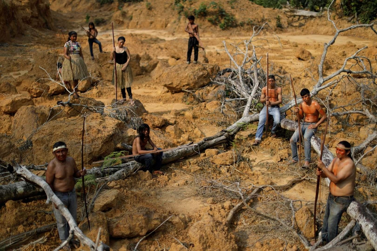 Hơn 18.000 thổ dân Mura sống tại Amazonas, bang có diện tích rừng Amazon lớn nhất Brazil. Các bộ tộc người bản địa thề sẽ sống chết để bảo vệ rừng thiêng.