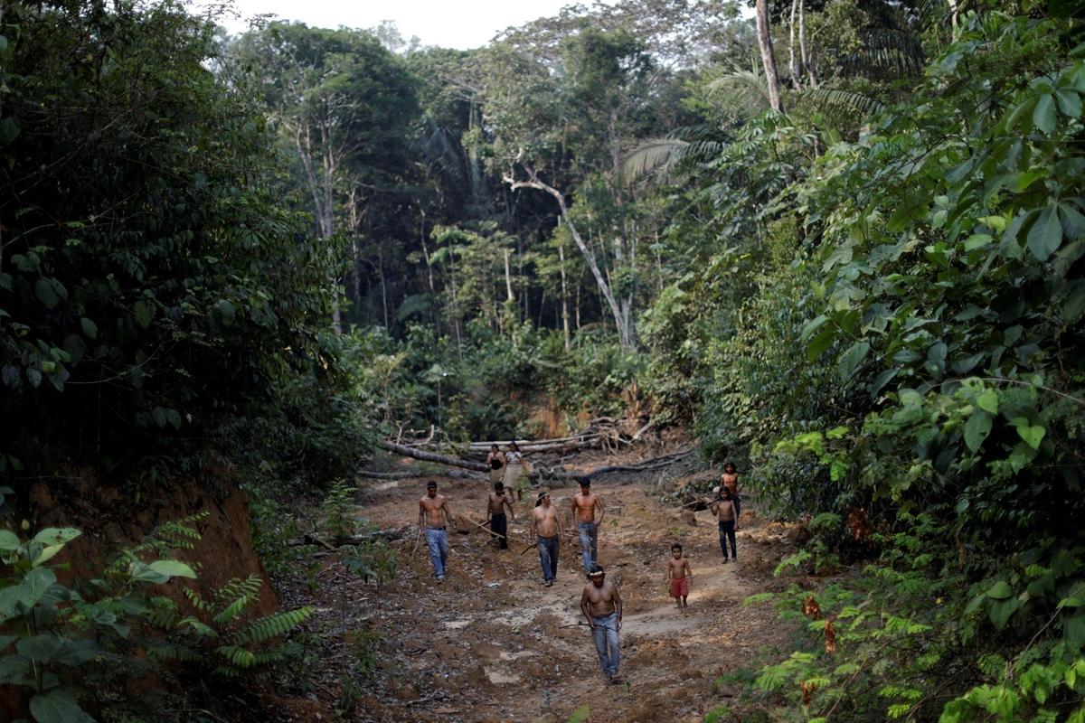 Những đám cháy trong rừng Amazon đã ảnh hưởng trực tiếp đến cuộc sống của những bộ tộc sinh sống trong rừng
