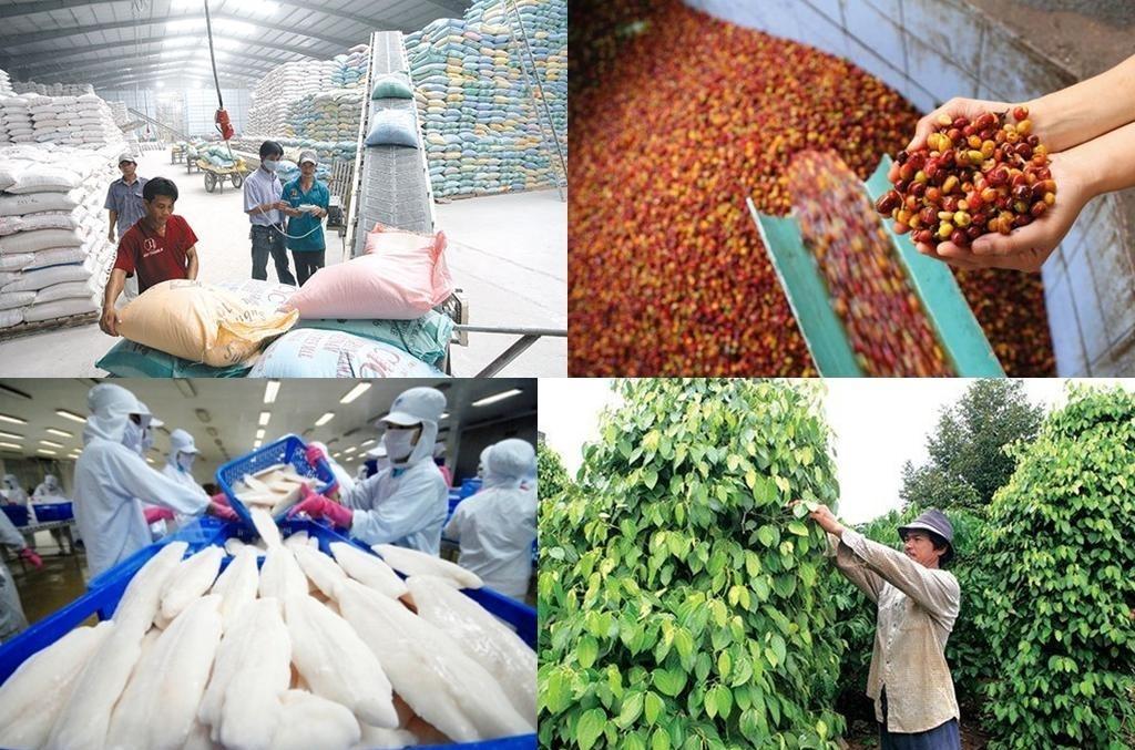 8 tháng đầu năm 2021, kim ngạch xuất khẩu nông, lâm, thủy sản ước đạt 32,1 tỷ USD, tăng 21,6% so với cùng kỳ năm trước. Ảnh: Internet