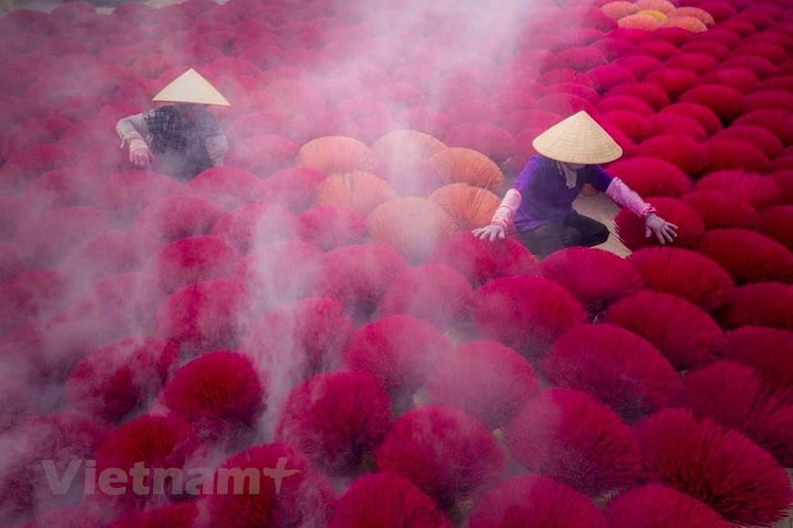 Đến thăm nơi đây, du khách sẽ rất ấn tượng với những bó tăm hương màu đỏ rực hoặc hồng sẫm như những đóa hoa rực rỡ sắc màu dưới nắng. (Ảnh: PV/Vietnam+)