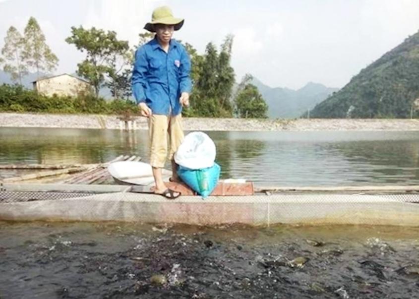 Mô hình nuôi cá lồng của HTX Cường Thịnh làm ăn hiệu quả sau khi được hỗ trợ về vốn. (Ảnh: TL)