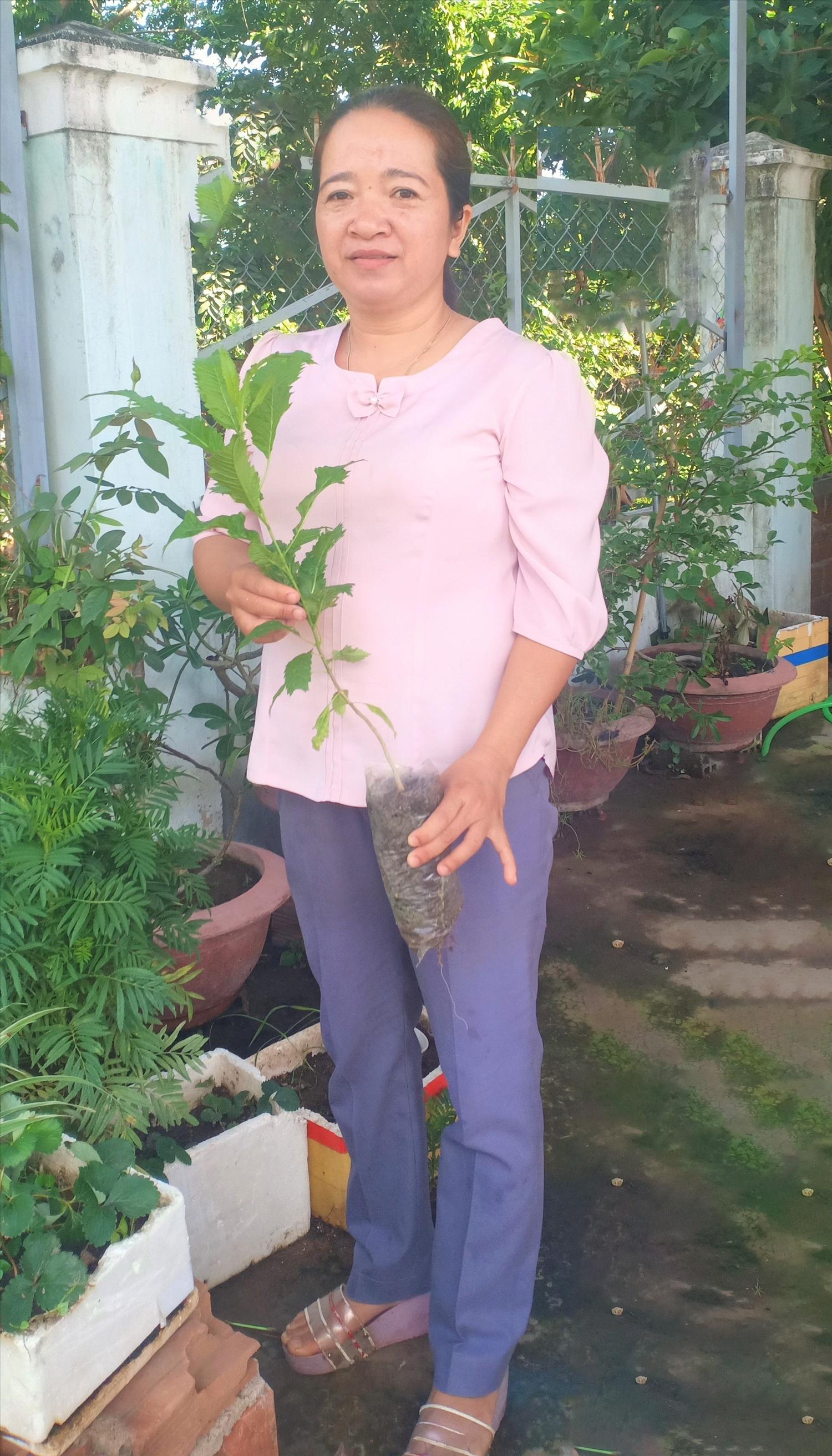 Chị Li Na chia sẻ việc ươm thành công giống cây hoàng yến để trồng trên các tuyến đường vào buôn Rưng Ma Nin