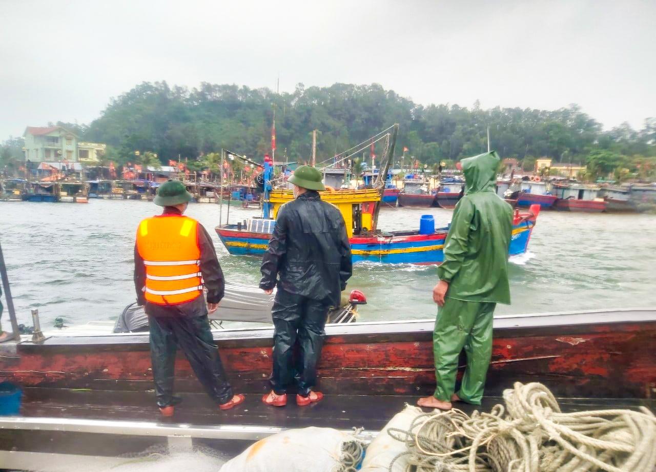 Bộ đội biên phòng Thanh Hóa giúp dân thu hoạch lúa tránh bão 6
