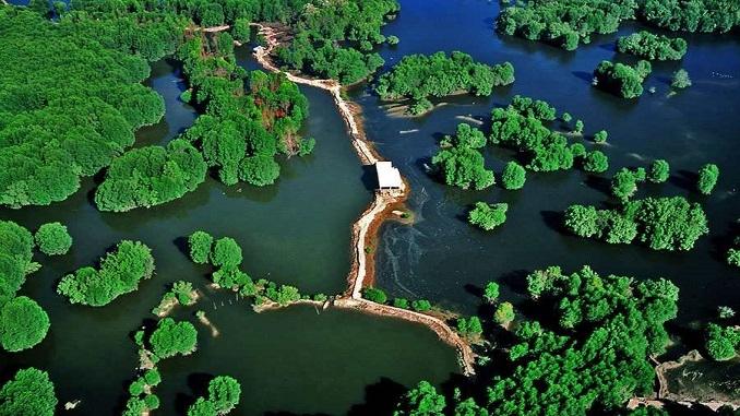 Khu du lịch sinh thái Rừng Sác Cần Giờ